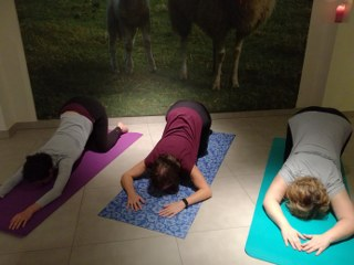 Yoga Zelem Diest
