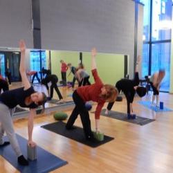 Yoga Holsbeek
