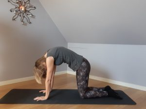 Privé Yoga online Praktijk Adamas